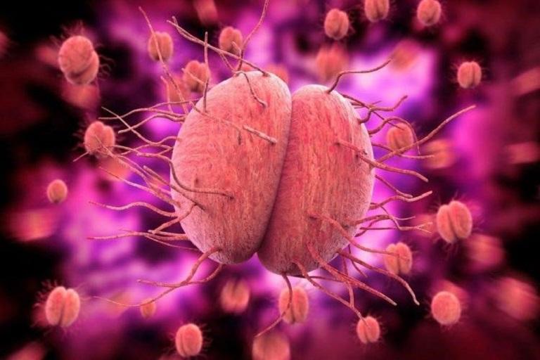 Một số loại vi khuẩn gây viêm mào tinh hoàn ở nam giới