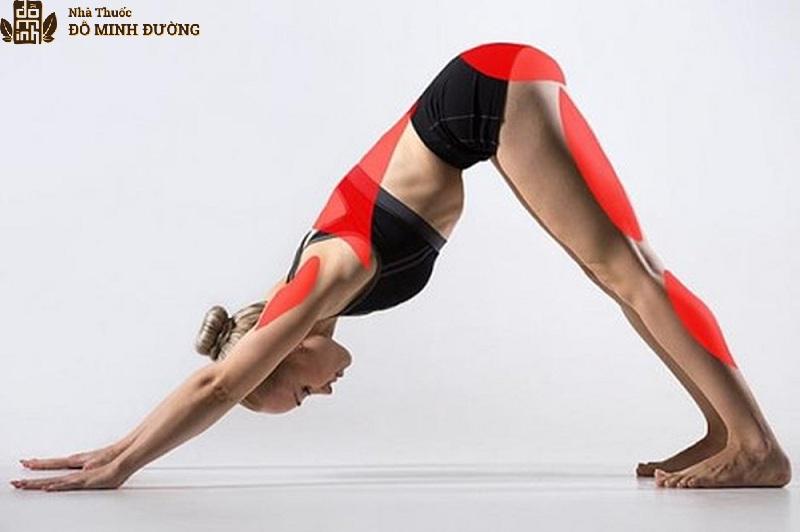 Bài tập yoga tư thế cúi đầu chữa thoái hóa khớp gối