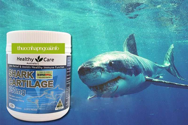 Sụn vi cá mập úc là một trong những sản phẩm được ưa chuộng nhất trên thị trường hiện nay