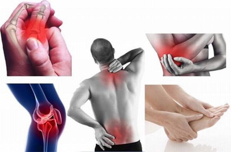 Thoái Cốt Hoànhỗ trợ điều trị bệnh về xương khớp rất hiệu quả