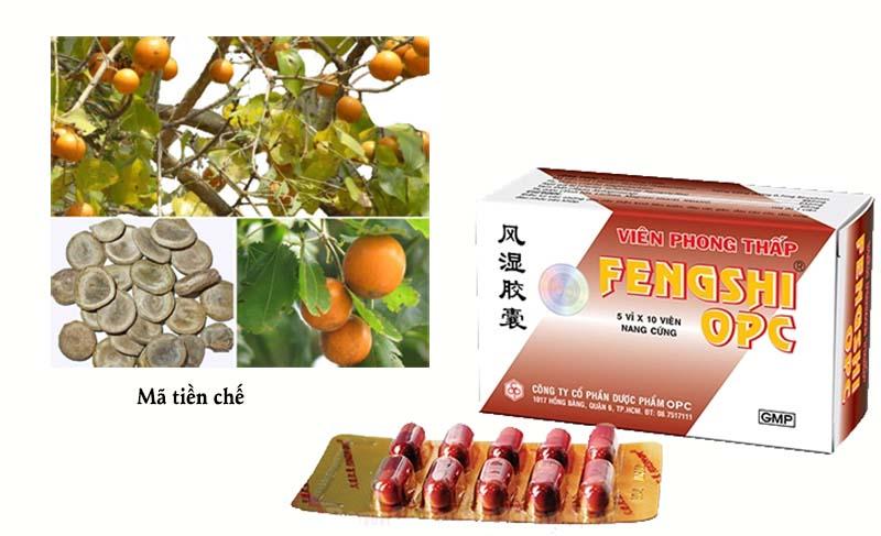 Phong thấp Fengshi bào chế từ những dược liệu quý trong tự nhiên