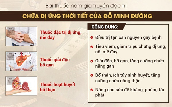 Bài thuốc nam chữa trị dị ứng thời tiết của Đỗ Minh Đường