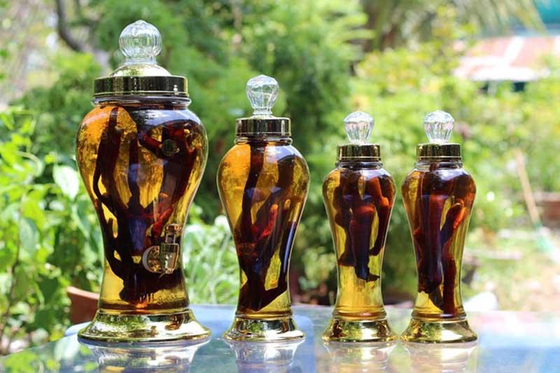 Rượu phong tê thấp dùng như thế nào và có thực sự tốt không?