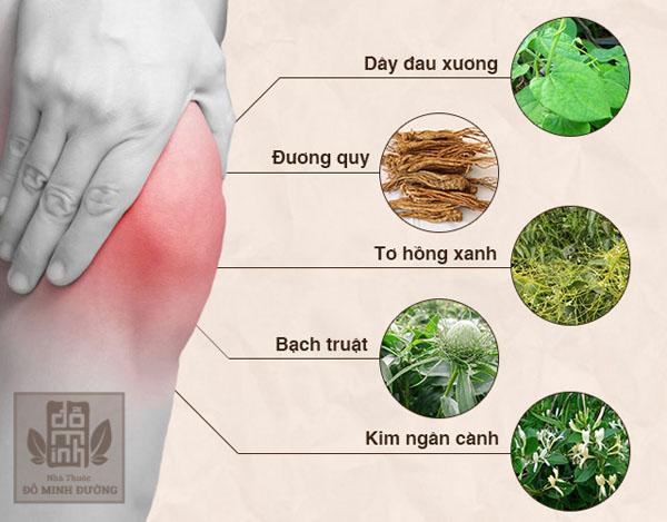 Thuốc nam có thành phần chính là thảo dược được thu hái trong nước nên an toàn