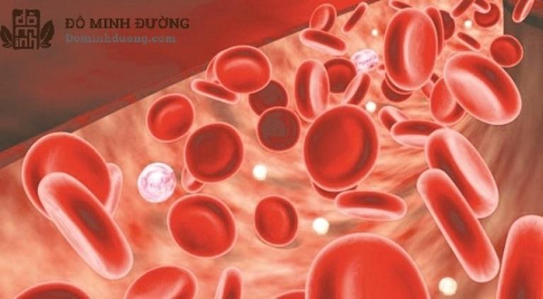 Hội chứng tăng Ure máu làm ảnh hưởng tới chức năng thận