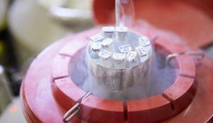 Phương pháp trữ đông tinh trùng là gì