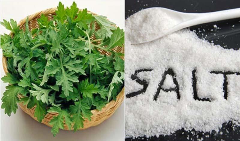 Ngải cứu là một trong những cây thuốc được dùng nhiều trong chữa bệnh xương khớp