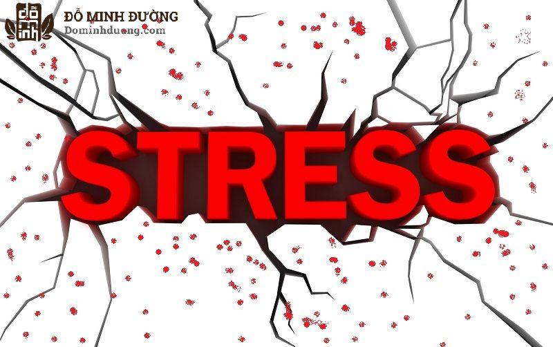 Stress, căng thẳng có thể dẫn tới dị ứng nổi mẩn đỏ trên mặt