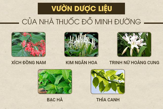 Phụ Khang Đỗ Minh được bào chế từ 100% thảo mộc sạch