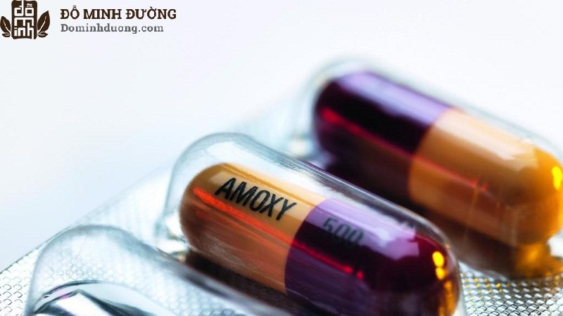 Người bệnh có thể được chỉ định kháng sinh điều trị từ 7 - 10 ngày