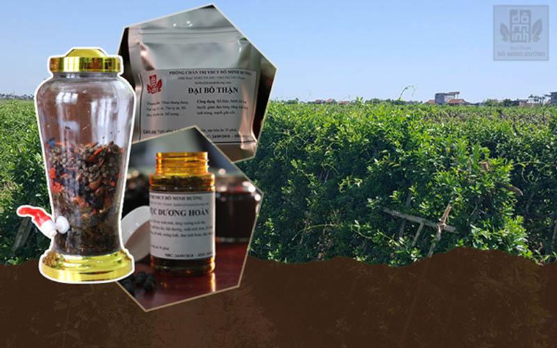 Cải tiến phương thức bào chế thuốc dưới dạng viên hoàn và dạng rượu uống