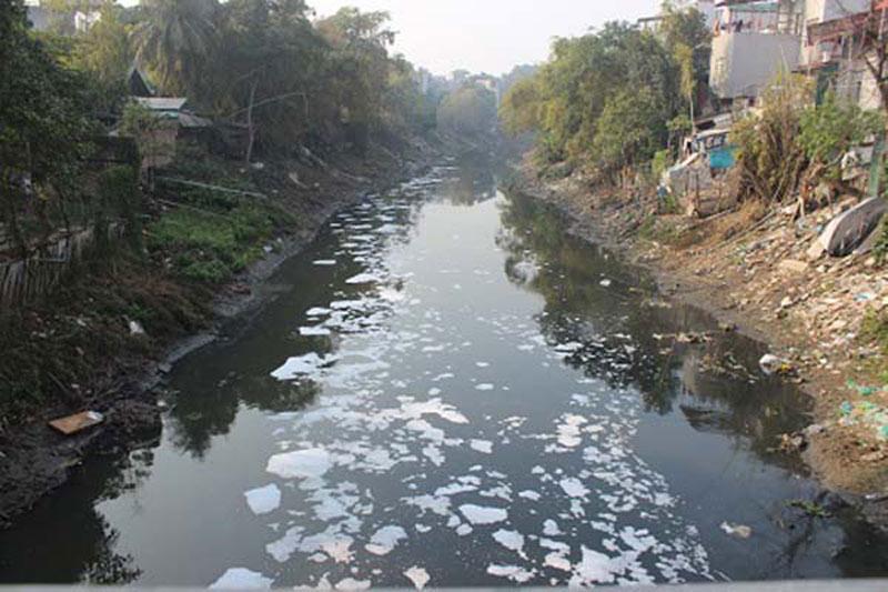 Ô nhiễm nguồn nước, không khí và thức ăn độc hại là vấn đề mang tính thời sự hiện nay