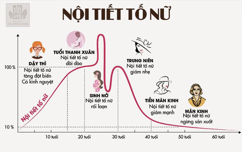 Nội tiết tố ở nữ giới thay đổi qua từng giai đoạn