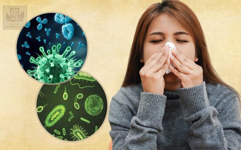 Bội nhiễm xoang do sự xâm nhập của nhiều virus, vi khuẩn gây ra