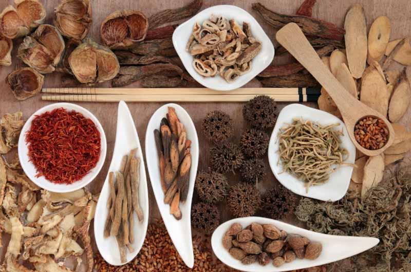 Thuốc Đông y chữa bệnh sẽ tập trung vào dưỡng âm, thanh phế, tiêu viêm, hoạt huyết