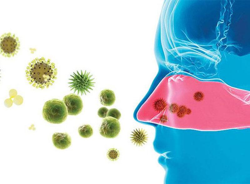 Có khoảng 20% trường hợp viêm mũi cấp do vi khuẩn gây ra