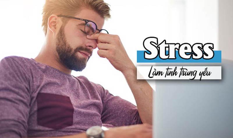 Căng thẳng, stress dài ngày có thể khiến nam giới suy giảm chất lượng tinh trùng