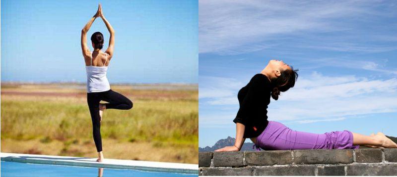 Bài tập Yoga tư thế Vrikshasana và Bhujangasana