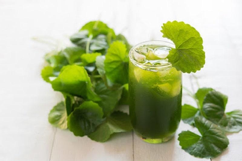 Lá rau má có tác dụng thanh nhiệt, giải độc, giúp hạn chế tình trạng ngứa da