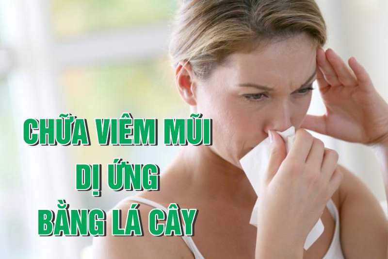 Chữa viêm mũi dị ứng bằng lá cây là biện pháp được nhiều người quan tâm