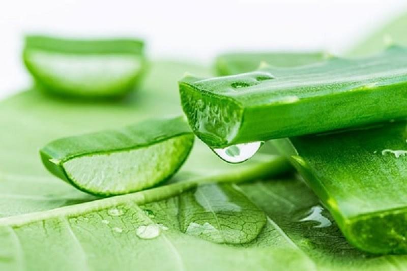 Nhựa Nha đam có tác dụng làm viêm sưng, làm dịu vùng da bị mụn nước