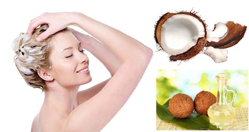 Gội đầu bằng dầu dừa có thể giúp cải thiện tình trạng ngứa ngáy