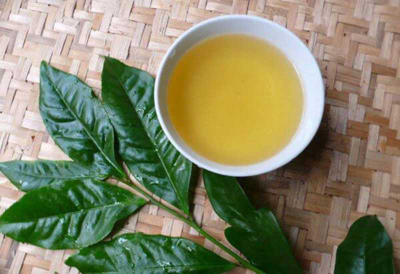 Uống trà xanh mỗi ngày điều trị viêm khớp hiệu quả