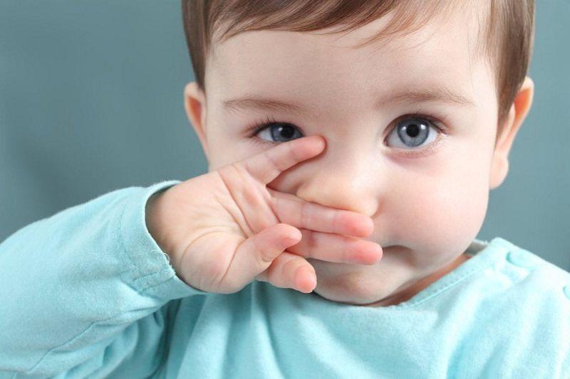 Vi khuẩn và nấm mốc trong không khí sẽ khiến niêm mạc mũi của trẻ bị viêm nhiễm và sinh ra sổ mũi