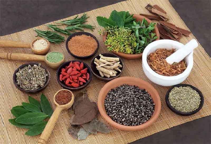Bài thuốc đông y chữa ngứa bằng cách giúp cơ thể thanh nhiệt, giải độc từ sâu bên trong