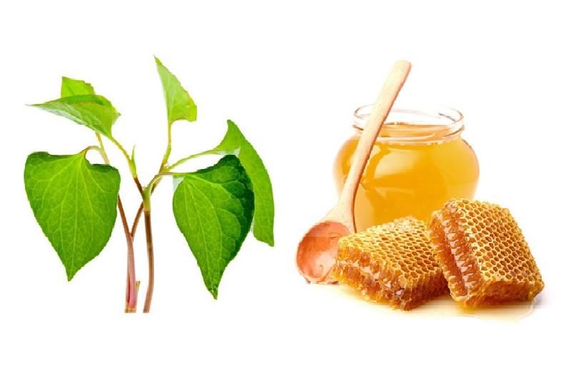 Chữa viêm họng từ rau diếp cá và mật ong