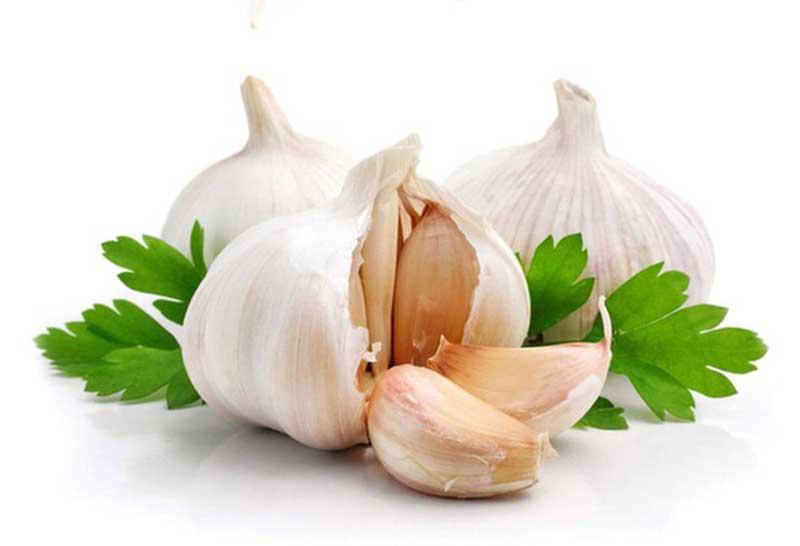 Tỏi có tính kháng khuẩn, tiêu viêm và chống sưng ngứa tự nhiên
