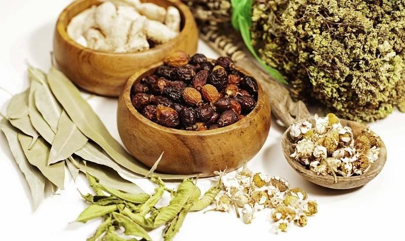 Bài thuốc Đỗ Minh Bài Thạch Khang chữa tận gốc chứng bệnh sỏi tiết niệu